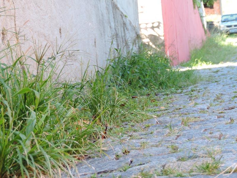 Rua-Johanna-Hering-05