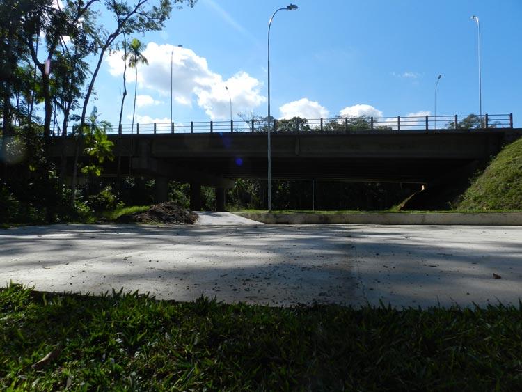 Ponte-Badenfurt-17.05.14-26