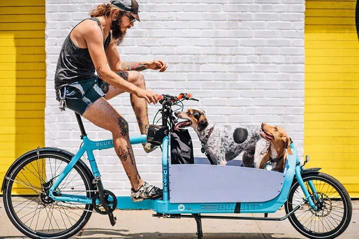 Bicicletas-Nova-Iorque-01