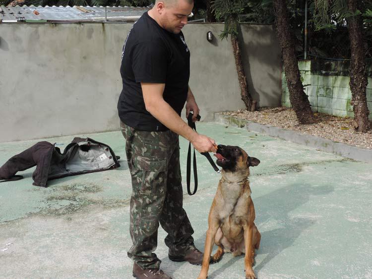 Treinamento cachorro (18)
