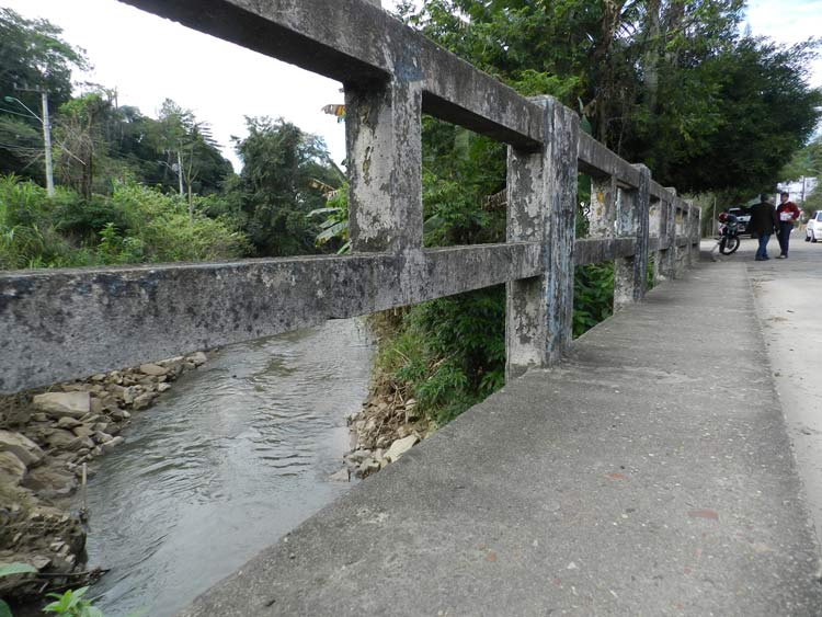Ponte_R-Mariana-Bronnemann_04