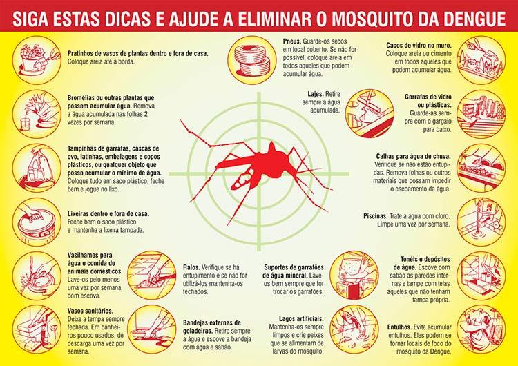 Folder_Dengue