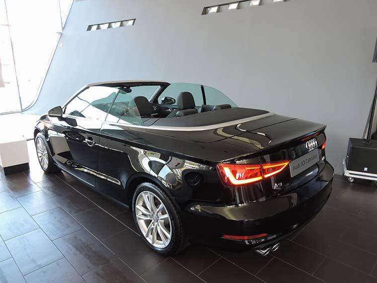 Audi 9-6-15 (7)