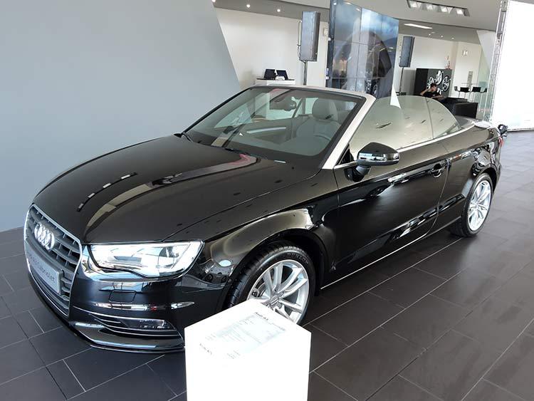 Audi 9-6-15 (8)