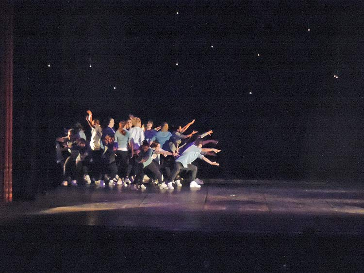 Festival Dança Blu-Joinville 29-7-15 (10)