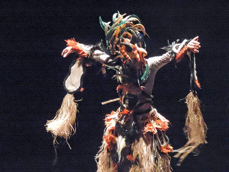 Festival Dança Blu-Joinville 29-7-15 (107)