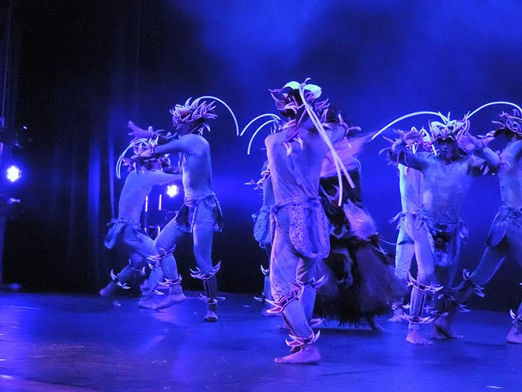 Festival Dança Blu-Joinville 29-7-15 (111)