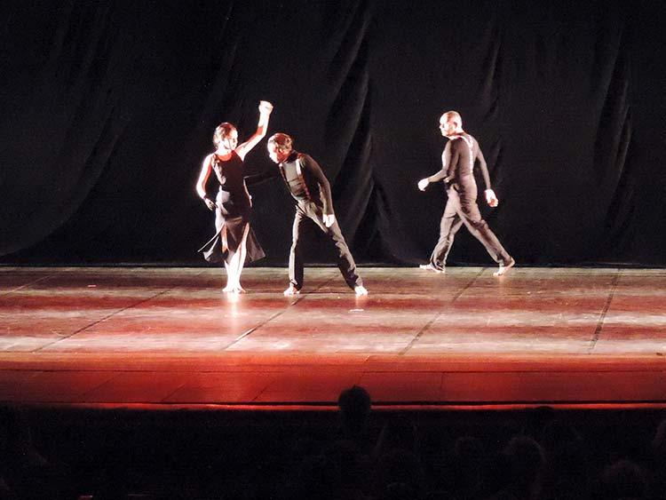 Festival Dança Blu-Joinville 29-7-15 (25)