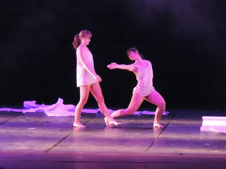 Festival Dança Blu-Joinville 29-7-15 (37)