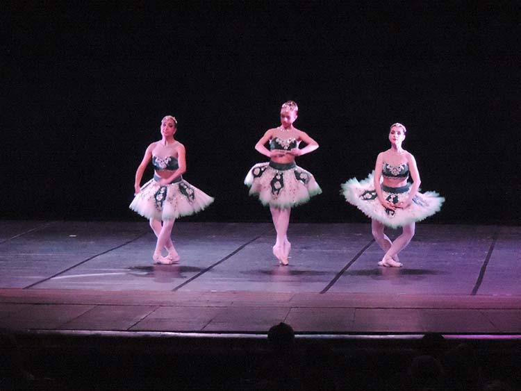 Festival Dança Blu-Joinville 29-7-15 (42)
