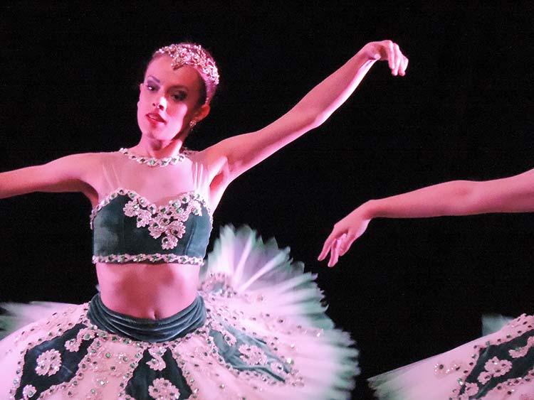 Festival Dança Blu-Joinville 29-7-15 (43)