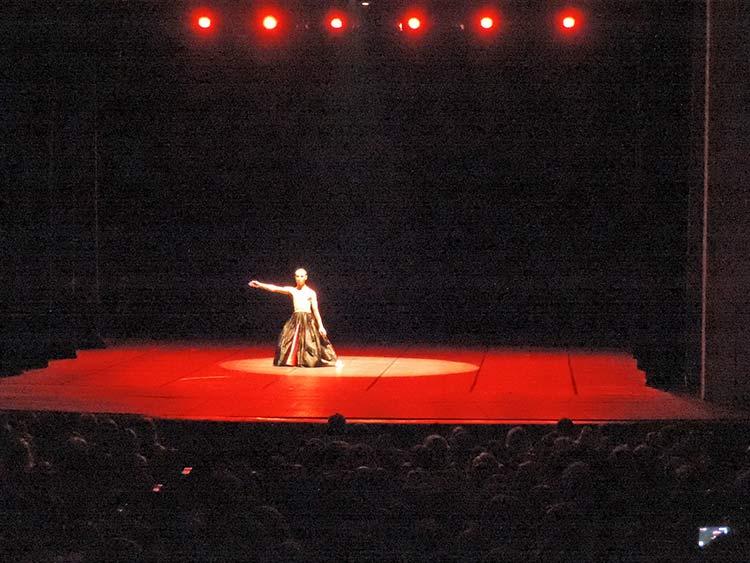 Festival Dança Blu-Joinville 29-7-15 (45)