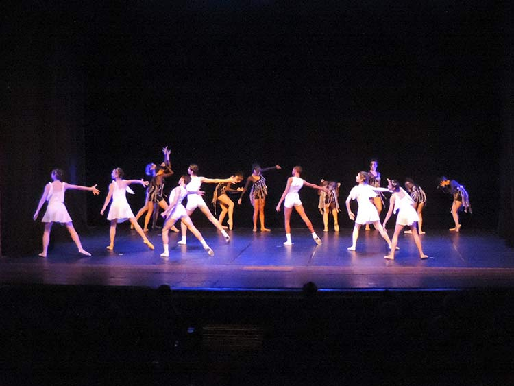 Festival Dança Blu-Joinville 29-7-15 (67)