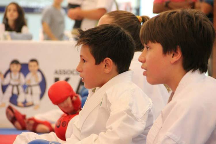 Karate-Blumenau_Jullho2015_01