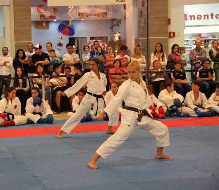 Karate-Blumenau_Jullho2015_02