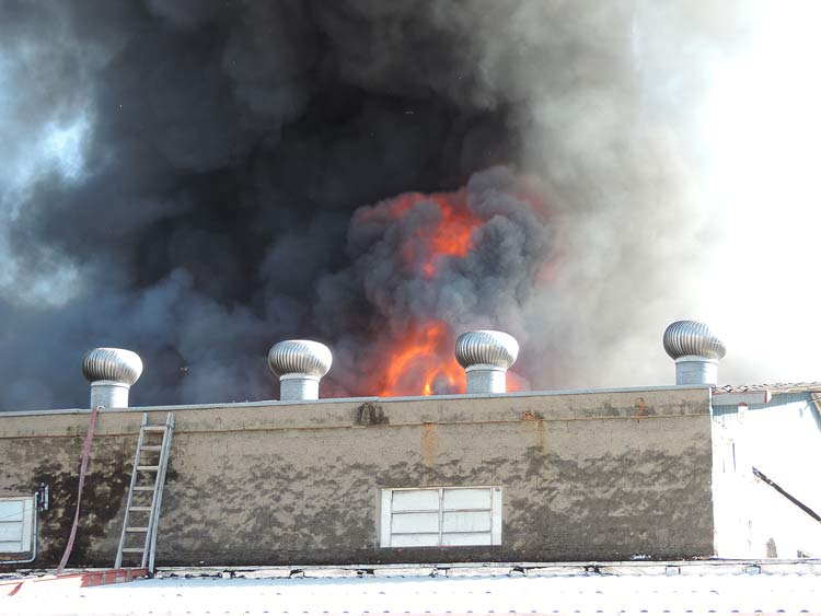 Incendio-Blukit_3-8-15_38