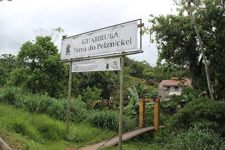 Pelznickel Guabiruba 20-12-15 (2)