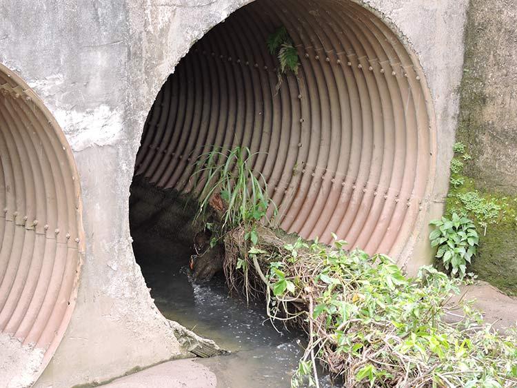 Canal ribeirao Parque Ramiro (2)