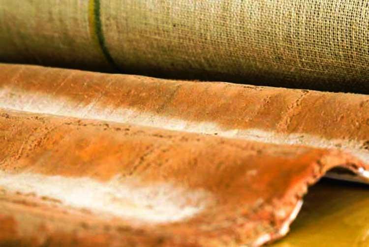 Ecotelha é desenvolvida por pesquisadores da Universidade Federal do Amazonas | Foto:  Fapeam
