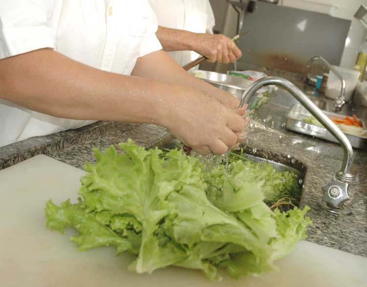 lavando-alimentos-verduras