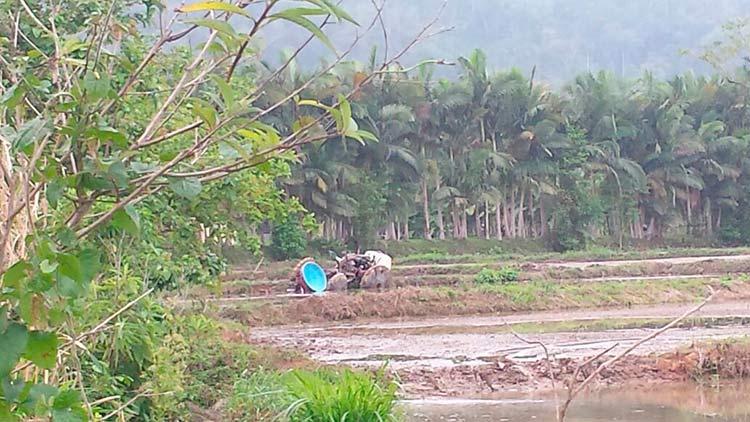agricultor_rio-cedros_31-10-16_01